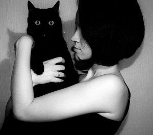 adopcja kotów z przytulisk